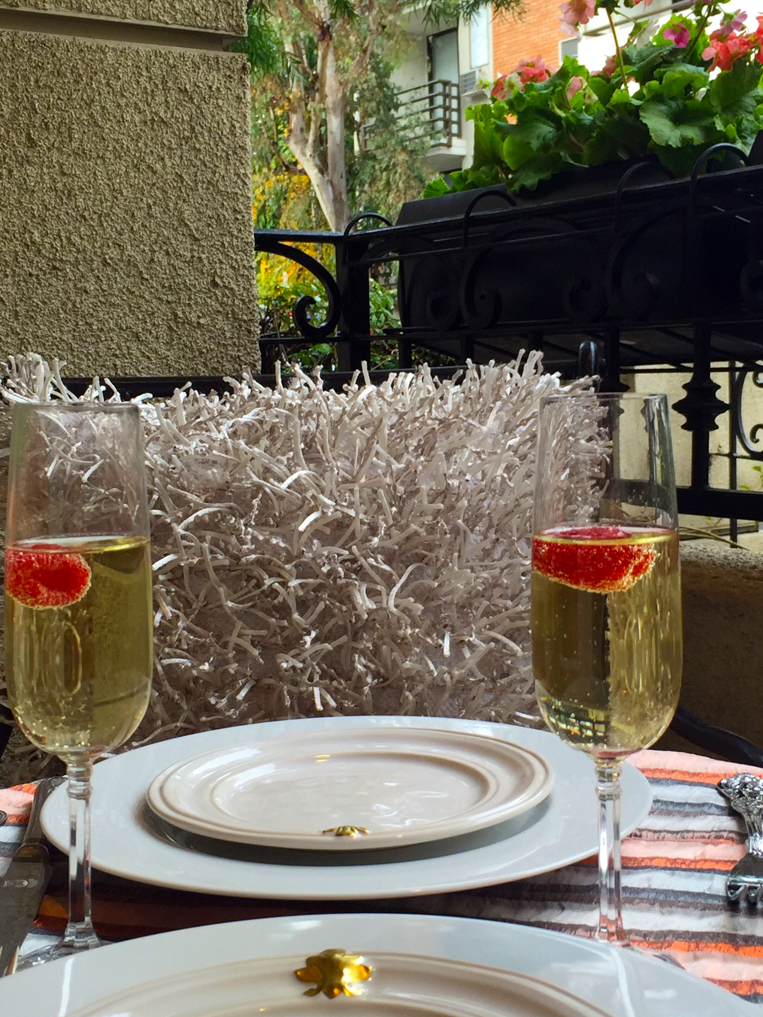 My Tablescape Inspiration: Champagne and Raspberries on the Balcony